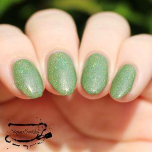 Evergreen in direct sunlight
