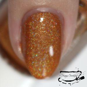 Pumpkin Spice macro taken with flash